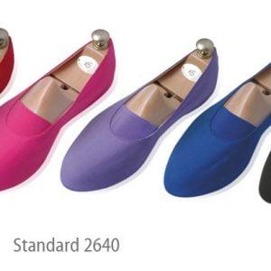 Euritmie schoenen